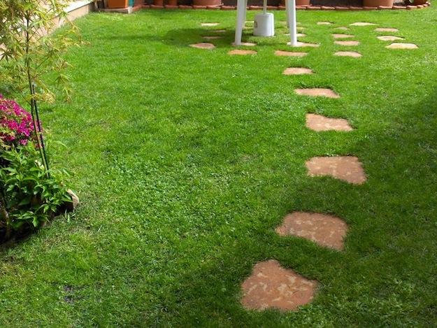 Tappeto erboso in 3 settimane news primo seed - Idee giardino senza erba ...